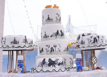 In order to bring a little pizzazz to your white cake, you can have romantic pictures drawn all over it.